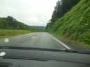 June 10 - On the road eastern Tennessee - kudzu vines taking over
