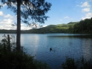 Watauga Lake; trail was underwater in 3 spots in this stretch